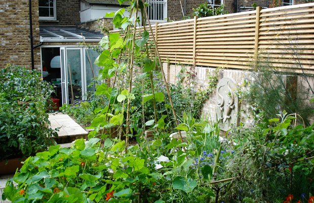 Slatted screen above the wall in an ornamental kitchen garden in London by Carol Whitehead garden design