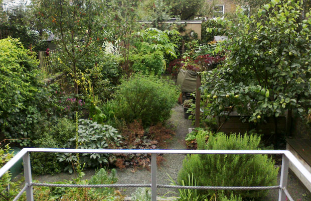 Layered planting with fruit trees, shrubs and perennials - Carol Whitehead garden design