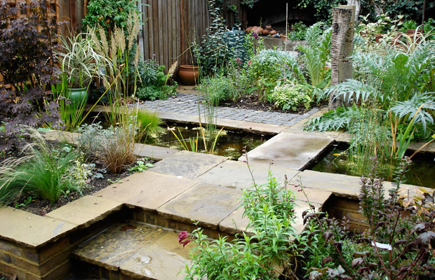 Matured planting in a city courtyard with integrated pond by Carol Whitehead garden design
