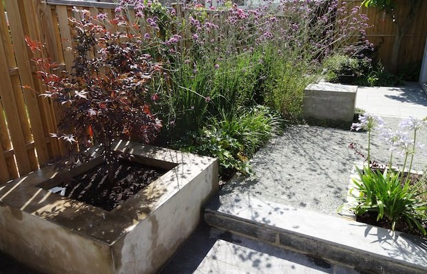 Summer planting and grey path in South London contemporary garden - Carol Whitehead garden design