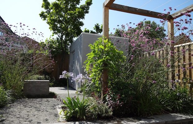 Lush summer planting with contemporary pergola and seat view - Carol Whitehead garden design