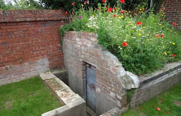 Old war time Anderson shelter planted with wildflower meadow roof  - Carol Whitehead garden design